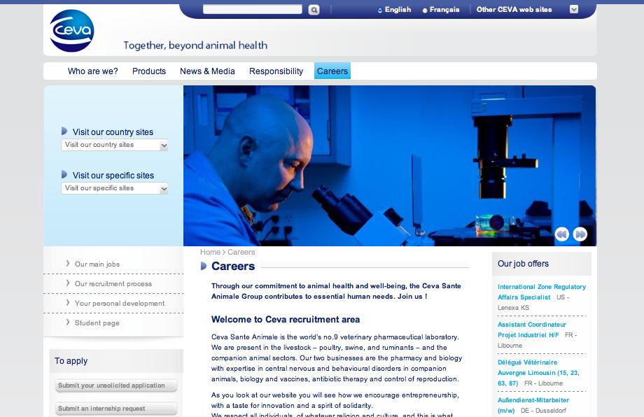 Screenshot Ceva Job