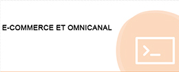 E-COMMERCE ET OMNICANAL