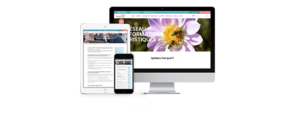 Apidae annonce sa collaboration avec Clever Age